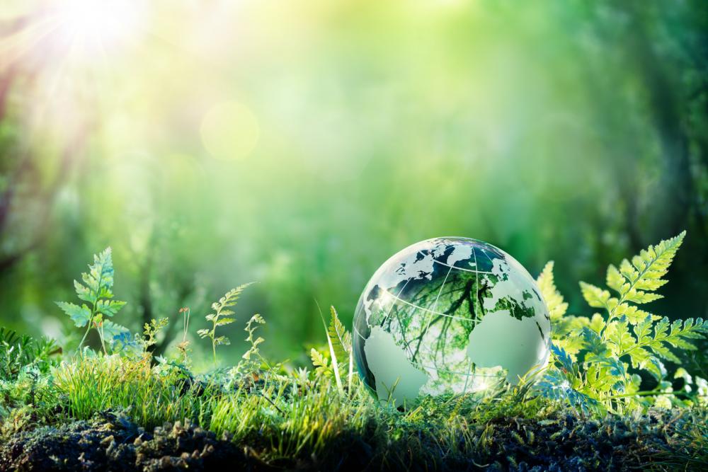 Umweltmanagement der IWL